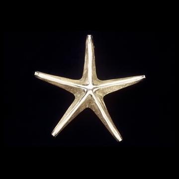 Sand Cast Brass Starfish Door Knocker